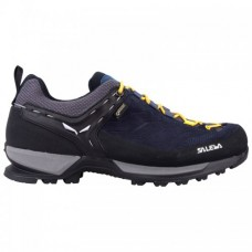 Кроссовки Salewa MTN Trainer GTX